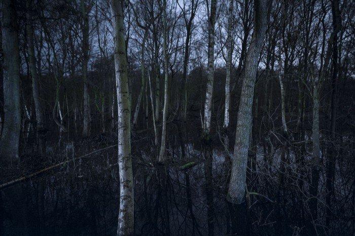 Swamps Adam van Noort Fotografie Nacht